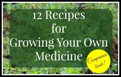 12 Recipes for Growing Your Own Medicine, The Welcoming House Blog