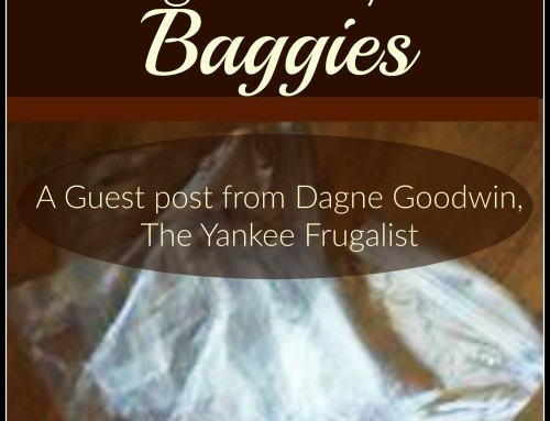 Saving Money with Baggies! (A guest post by Dagne of The Yankee Frugalist!)