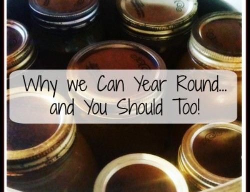 Why Canning is Something We Do Year Round….