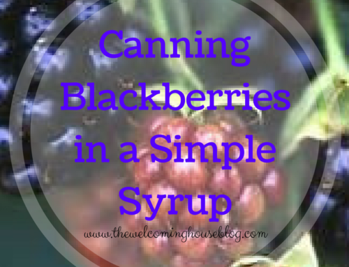Canning Blackberries in a Simple Syrup