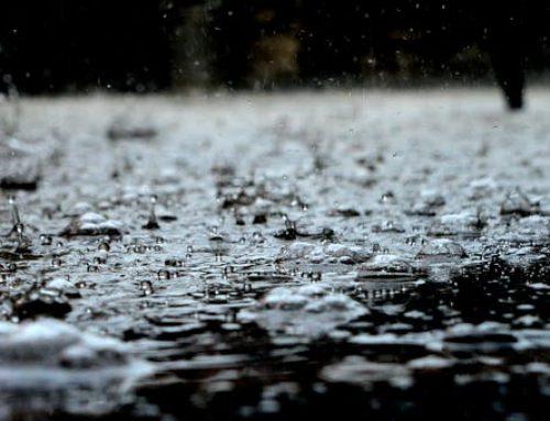 So. Much. Rain.