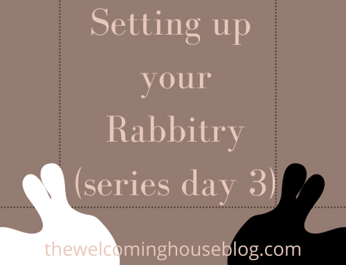 Setting up your Rabbitry…Do's and Don'ts….(Series Day 3)